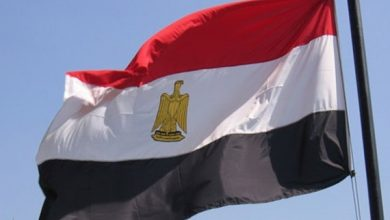 Egypt.. Details of the law issued against the Muslim Brotherhood, Arabic newspaper -Profile News