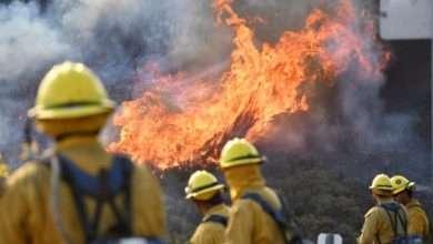 Before the fire season, Biden seeks to raise firefighters' wages, Arabic newspaper -Profile News