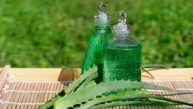 Aloe vera .. Five amazing benefits that many do not know, Arabic newspaper -Profile News