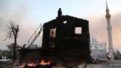 Turkey fires devour more people, Arabic newspaper -Profile News