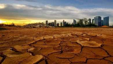 3 steps to protect the world from climate change!, Arabic newspaper -Profile News