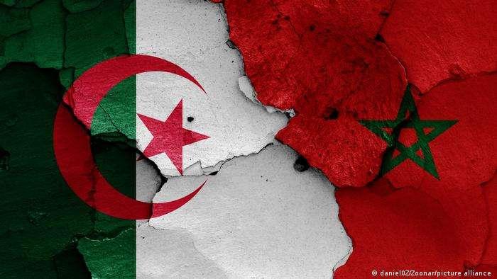 تصعيد كبير بين الجزائر والمغرب, صحيفة عربية -بروفايل نيوز