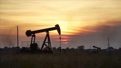 """إعصار """"آيدا"""" يدعم أسعار النفط, صحيفة عربية -بروفايل نيوز"""
