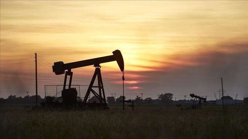 Hurricane Ida pushed up oil prices, Arabic newspaper -Profile News