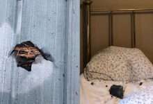 A small meteor falls on a house in Canada!, Arabic newspaper -Profile News